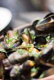 Odparowani mussels w białego wina kumberlandzie zdjęcia royalty free