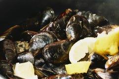 Odparowani mussels w klasycznym garnku z niektóre kawałkami cytryna zdjęcie stock