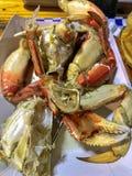Odparowany krab na talerzu zdjęcie stock