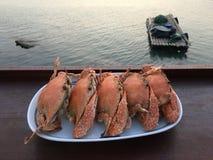 Odparowany kraba talerz tropikalną plażą obrazy royalty free