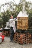 Odparowany warzywo w agritainment, Chengdu, porcelana Fotografia Stock