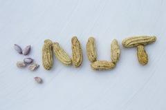 Odparowany zmielony arachid obraz stock
