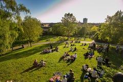Odpoczynek ludzie w Szwecja jest w Sztokholm, centrum miasto, wieczór, zielona trawa w parku, pinkin Zdjęcia Royalty Free