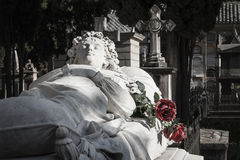 Odpoczynek w pokoju fotografia royalty free