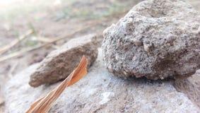 Odpoczynkowy kamień zdjęcia royalty free