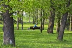 odpoczywa w parku na ławce w Minsk, Białoruś fotografia royalty free
