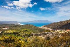 odpowiada mediterranian pobliski oliwki fotografia stock