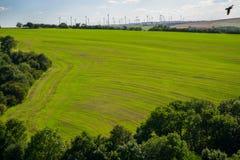 Odpowiada z młodymi uprawami z silnikami wiatrowymi w tle, fra fotografia royalty free