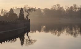 Odra river and tree on Ostrow Tumski in the morning fog. Sunrise over river. Wroclaw royalty free stock photo