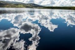 Odruch na jeziorze fotografia royalty free