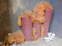 Odsłonięte plastikowe przewód drymby zdjęcie royalty free