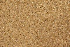 Odsłonięty łączny koniec Myjący piasek Tekstura i tło obrazy royalty free