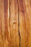 Odsłonięty drewno zdjęcie royalty free