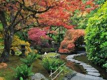 Odskocznia do czegoś w japończyka ogródzie Zdjęcia Stock