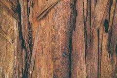 Odszczepiający drewniany tło i tekstura Zbliżenie widok drzazgi drewna tekstura Abstrakcjonistyczna tekstura i tło dla projektant Fotografia Royalty Free
