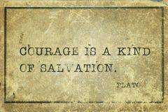 Odwaga jest Plato obrazy royalty free