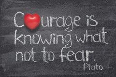 Odwaga strachu nie serce zdjęcia stock