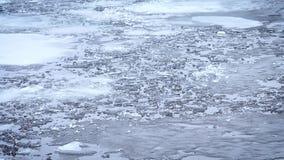 odwilż Kawałki, bloki i floes stapianie lód, unoszą się na wodzie zbiory wideo