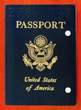 Odwoływająca USA Pasport Obrazy Stock