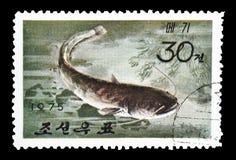 Odwoływający znaczek pocztowy drukujący koreą północną obraz royalty free
