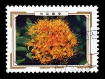 Odwoływający znaczek pocztowy drukujący koreą północną obraz stock