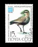 Odwoływający znaczek pocztowy drukujący sowieci - zjednoczenie obraz stock