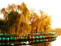 Łodzi i jesieni drzewa Zdjęcia Royalty Free