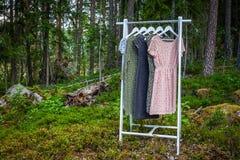 Odzieżowy wieszak z sukniami w drewnach obraz stock