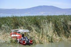 Łodzie i jezioro przód, Chapala Zdjęcia Royalty Free