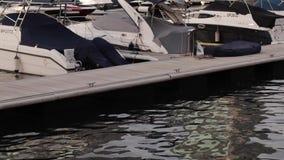 Łodzie na molu przy zmierzchem w Dubaj zdjęcie wideo