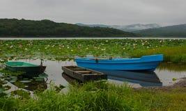 Łodzie przy jeziorem z lotuses Obraz Royalty Free
