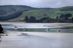 Łodzie przy Waikawa schronieniem w Catlins blisko Curio zatoki, Nowa Zelandia fotografia royalty free