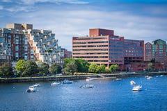 Łodzie w Charles budynkach w Cambridge i rzece, w Boston Fotografia Stock