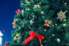 odznaczony świąteczne drzewko Fotografia Stock