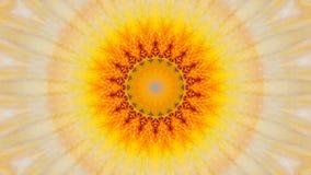 Odzwierciedlający skutek irysowy kwiat ilustracji