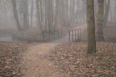 Oe ja jest strasznym mostem w mgłowy forrest Zdjęcie Royalty Free