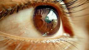 Oeil photos stock