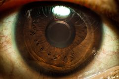 Oeil Images stock