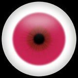 Oeil albinos Photographie stock libre de droits