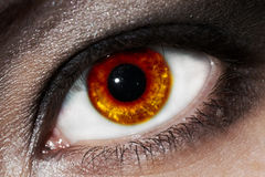 Oeil ardent Image libre de droits