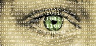 Oeil avec le code binaire image libre de droits