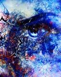 Oeil avec le mandala ornemental oriental et la couleur Images libres de droits