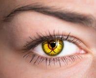 Oeil avec le symbole de biohazard Photographie stock libre de droits