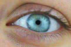 Oeil bleu Photographie stock libre de droits