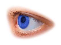 Oeil bleu de femme image libre de droits