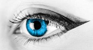 Oeil bleu noir et blanc de femme Photographie stock