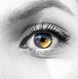 Oeil d'arc-en-ciel Image libre de droits