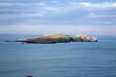 Oeil d'Irelands. image stock