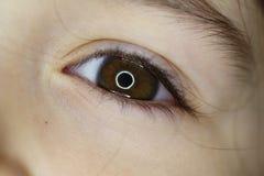 Oeil de bébé Photo libre de droits
