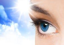 Oeil de beauté Photos libres de droits